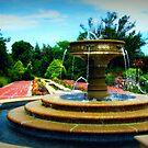 Sarah Lee Baker Perennial Garden by Lea  Weikert