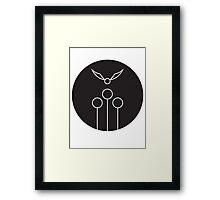 Quidditch Framed Print