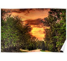 Forest Shadows Loom at Sunset Poster