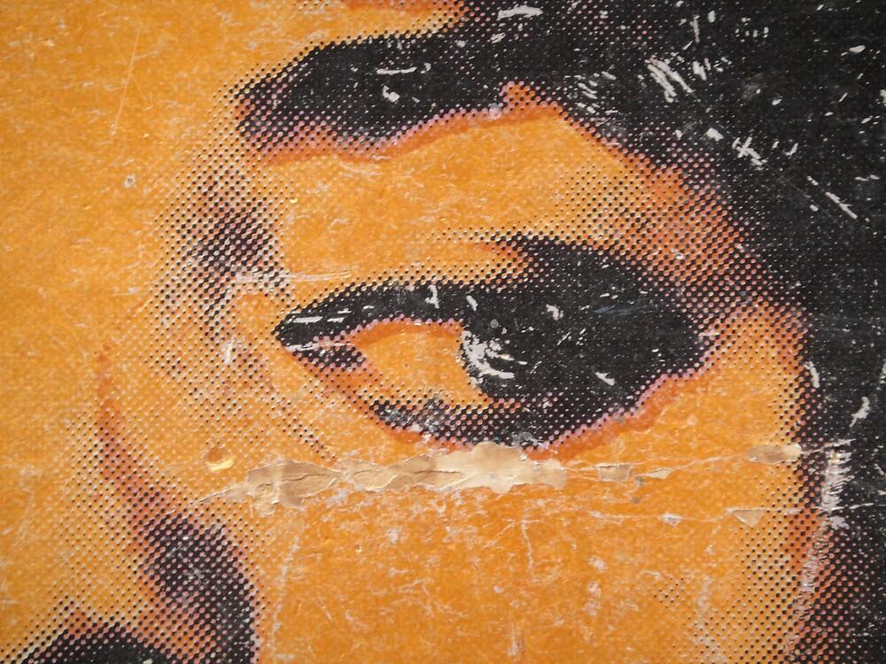 Eye of an activist  by islefox