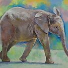 Baby Elephant by Michael Creese