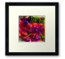 Fuchsia Excitement Framed Print