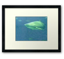 Mr. Jaws Framed Print