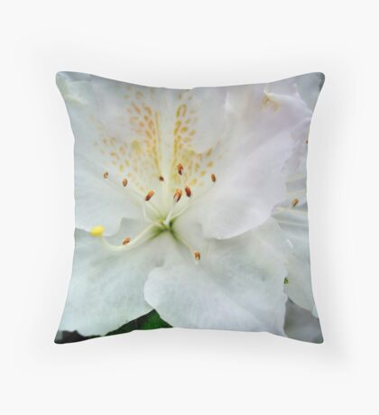 AZALEA - white  ^ Throw Pillow