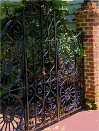 Fenced In- Charleston, SC by Mylissa Artreche