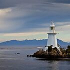 Hells Gate lighthouse #1 by Roger Neal