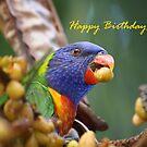 Happy Birthday Dad by aussiebushstick