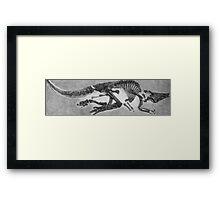 Funky Saurolophus Framed Print