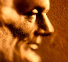 Macro Lincoln by Daniel Owens