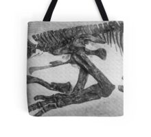 Funky Saurolophus Tote Bag