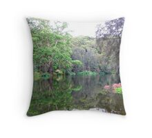 Gazing into a Mirror of Mother Nature  Throw Pillow