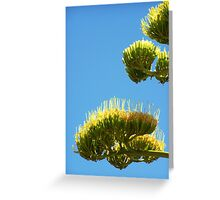Agave Blossoms Greeting Card