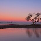 Dusk Reflections - Victoria Point Qld by Beth  Wode