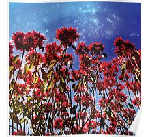 Flowers galaxies Poster