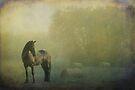 Morning Hush by KBritt