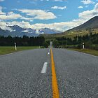 A New Zealand Highway by 104paul