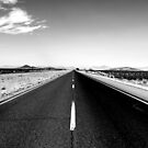 On the road by Bernardo Trindade