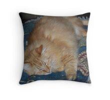 Sonny Takes A Nap Throw Pillow