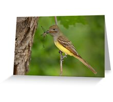 Dragon for Dinner - Great Crested Flycatcher. Greeting Card