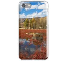 Red Grass Beach iPhone Case/Skin
