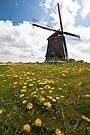 Dutch Windmill by Brendan Schoon