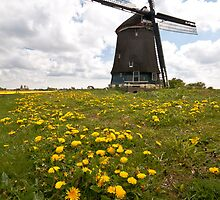 Dutch Windmill by Brendan Schoon