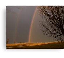 Seeing  Double Canvas Print