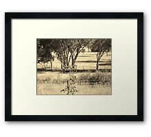 Treehouse Outback Style - Armidale NSW Framed Print