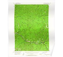 USGS Topo Map Oregon Illahee Rock 282599 1955 62500 Poster