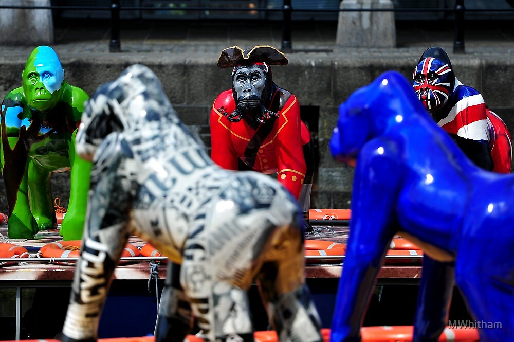 Gorillas by MWhitham