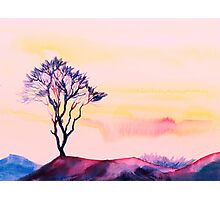 At peace with solitude Photographic Print