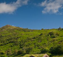 Grass roofed cabin by cannonedale