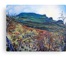 'Grandfather Mountain' Canvas Print