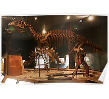 Cool Yangchuanosaurus Poster
