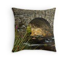 Evening light at Postbridge Throw Pillow