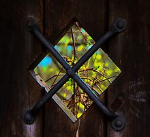 Window by RosiLorz