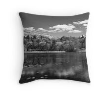 Favourite Places Throw Pillow