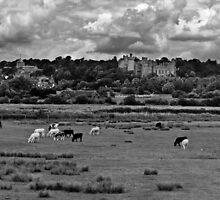 Arundel Castle by Leon Ritchie