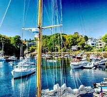 Perkin's Cove I by SPPhotography