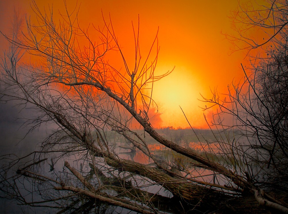 The Big Red Sun by Charles & Patricia   Harkins ~ Picture Oregon