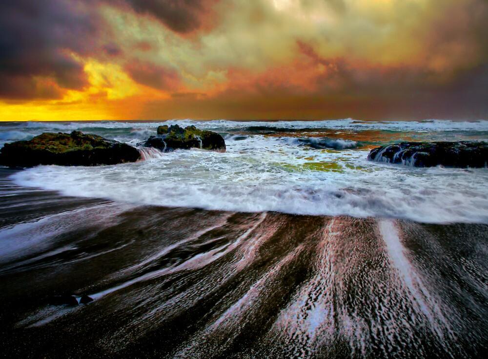 Smelt Sands by Charles & Patricia   Harkins ~ Picture Oregon