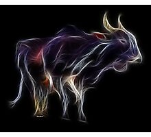 OX - Chinese Zodiac by Liane Pinel Photographic Print