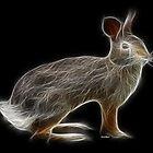 Rabbit - Chinese Zodiac by Liane Pinel by Liane Pinel