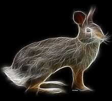 Rabbit - Chinese Zodiac by Liane Pinel by Liane Pinel