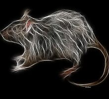 Rat - Chinese Zodiac by Liane Pinel by Liane Pinel