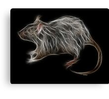Rat - Chinese Zodiac by Liane Pinel Canvas Print
