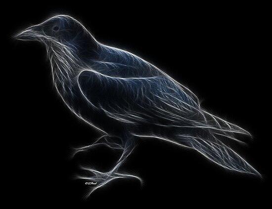 Medicine Wheel Totem Animals by Liane Pinel- Raven by Liane Pinel