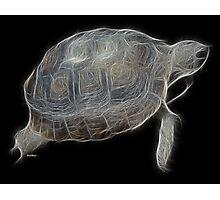 Medicine Wheel Totem Animals by Liane Pinel- Tortoise Photographic Print
