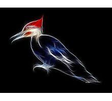 Medicine Wheel Totem Animals by Liane Pinel- Woodpecker Photographic Print
