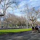 Winter in Melbourne by machka